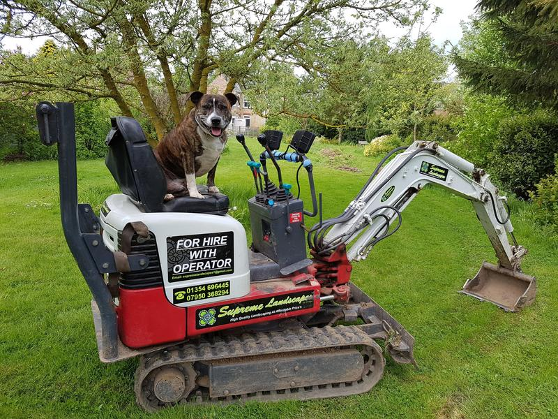 Micro digger Hire with operator, march cambs  in March