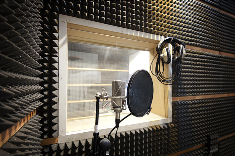 Vocalist wanted, Singing jobs | Vocalizr