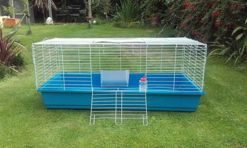 Indoor rabbit/guinea pig cage in Worthing - Expired | Friday-Ad