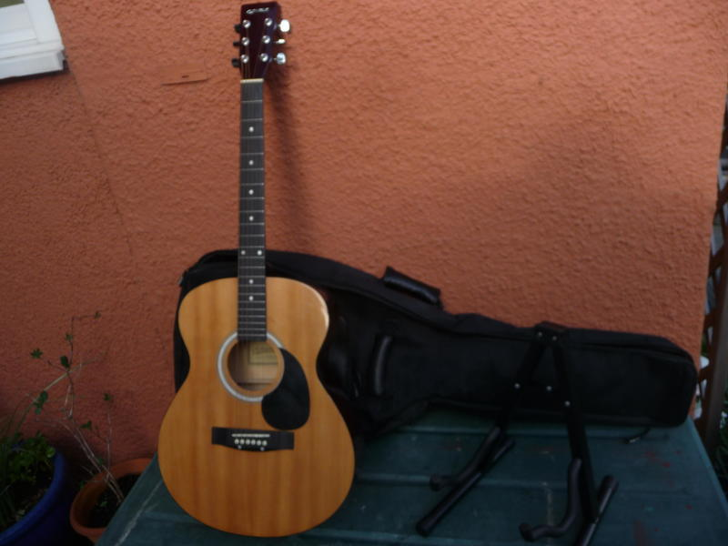 elevation electro acoustic guitar