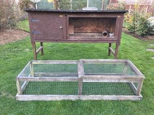 Rabbit Guinea Pig Double Hutch In Bristol Expired Friday Ad