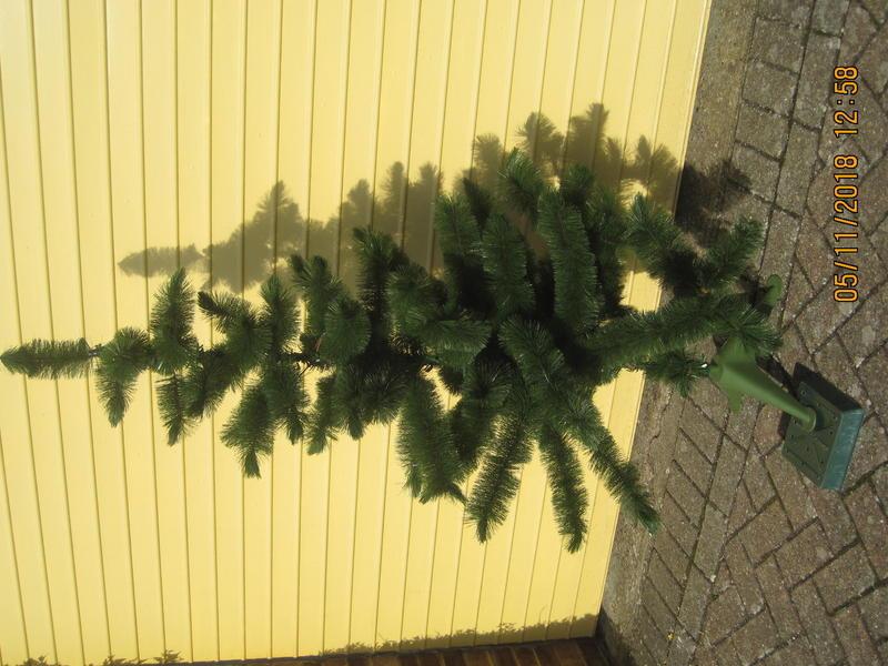 Christmas Tree In Brighton