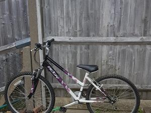 Used Bikes for Sale in Brighton | Friday-Ad