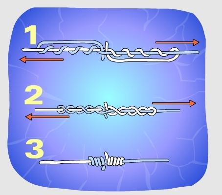 Węzeł baryłkowy - Służy do łączenia ze sobą dwóch żyłek.