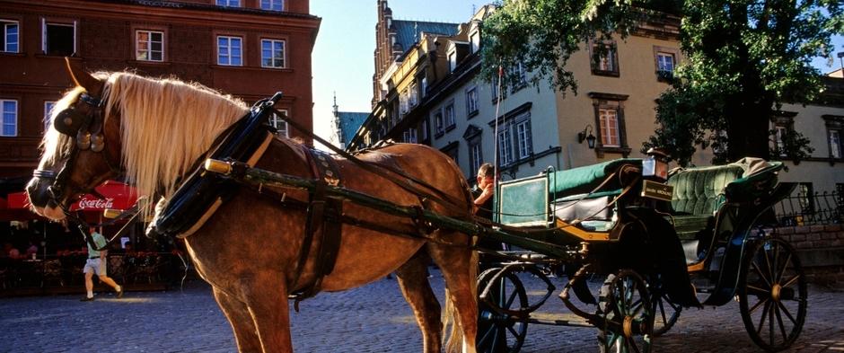 Zapoznaj się z ofertą naszych wycieczek po Warszawie
