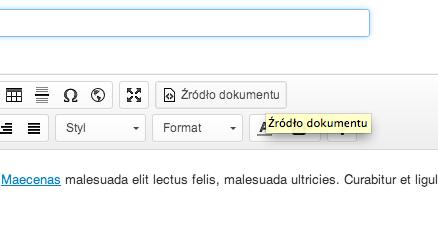 Jak wkleić na stronę kod HTML lub Skrypt