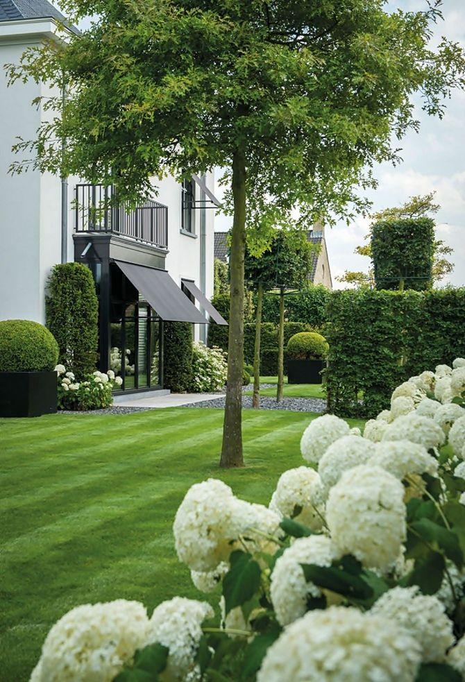 Ogr d ma o wymagaj cy vertit studio architektura krajobrazu - Deco en de tuin ...