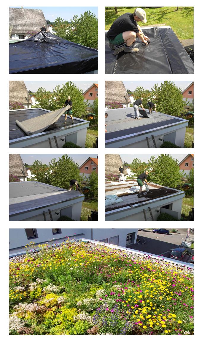 Projekt ogrodu na dachu - Projekty ogrodów Warszawa