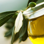 The wonders of  olive oil | Wellness magazine