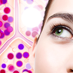Telomere testing: may reveal biological age | Wellnessmagazine