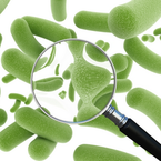 Go with Your Gut!|Wellness magazine