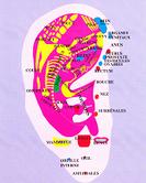 Auriculoth%c3%a9rapie 290x240