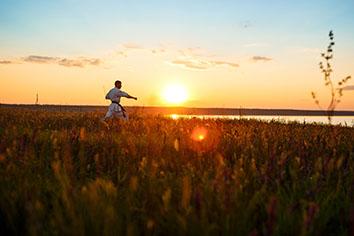 Silhouette of sportive man training karate in field at sunrise