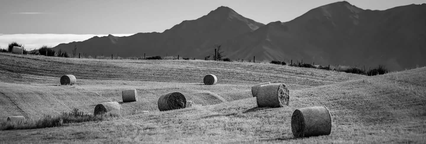 Haystack in a field in summer against a background of mountains in new zealand