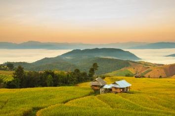 Sunrise at terraced paddy field in mae-jam village