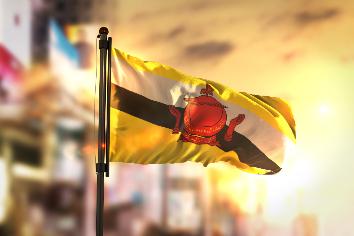Brunei flag against city blurred background at sunrise backlight