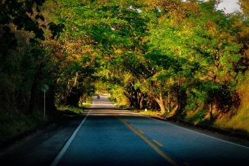 Travel on road