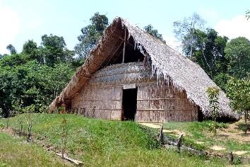Hut brazil rainforest amazonas nature tropical