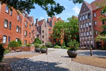 Cozy buildings in residential zone of brussels