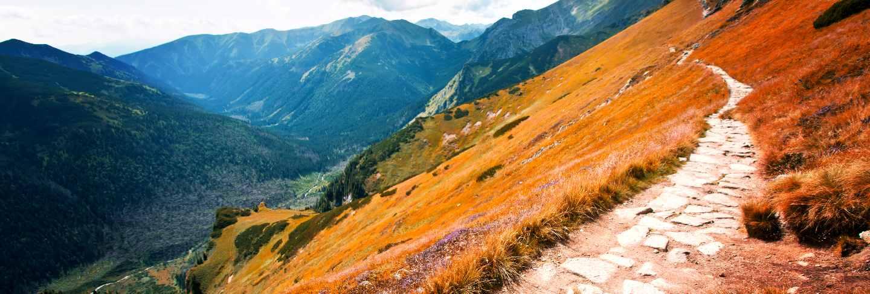 Fantasy and colorful nature landscape. carpathia.