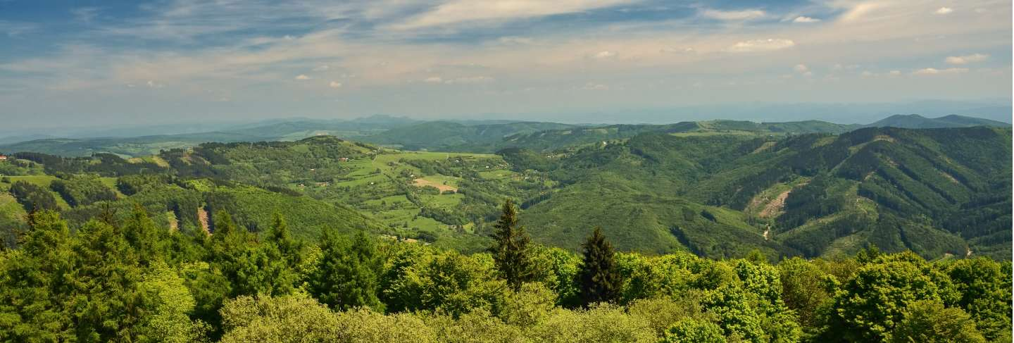 Beautiful landscape in the mountains in summer
