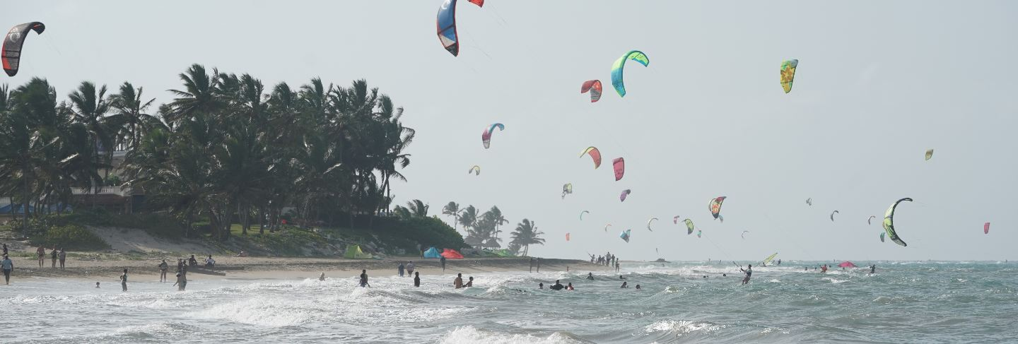 People kiteboarding on a beach near the trees in the dominican republic