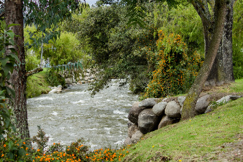 Beautiful river going through a countryside town park