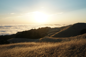 High hills covered in dry grass on a sunny day with a visible skyline on mt. tam in marin, ca