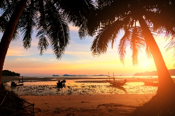 Sunset over the tropical beach with coconut palm and boat at koh tao