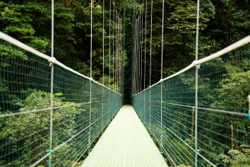 View of suspension bridge over the costa rica rainforest