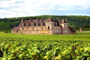 French vineyard chateau