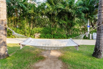 Empty white hammock between pine trees on tropical beach as a symbol of relaxation