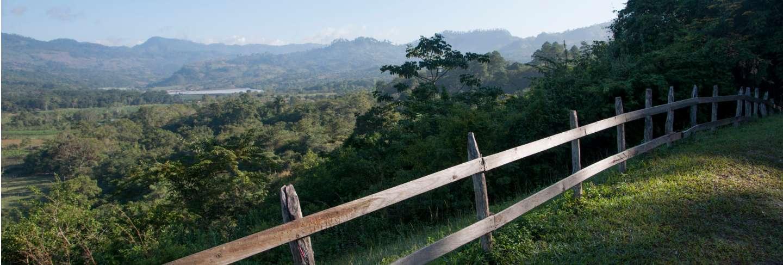 Fence in copan archaeological park, copan, copan ruinas, copan department, honduras