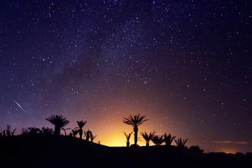 Morocco sahara desert starry night sky over oasis
