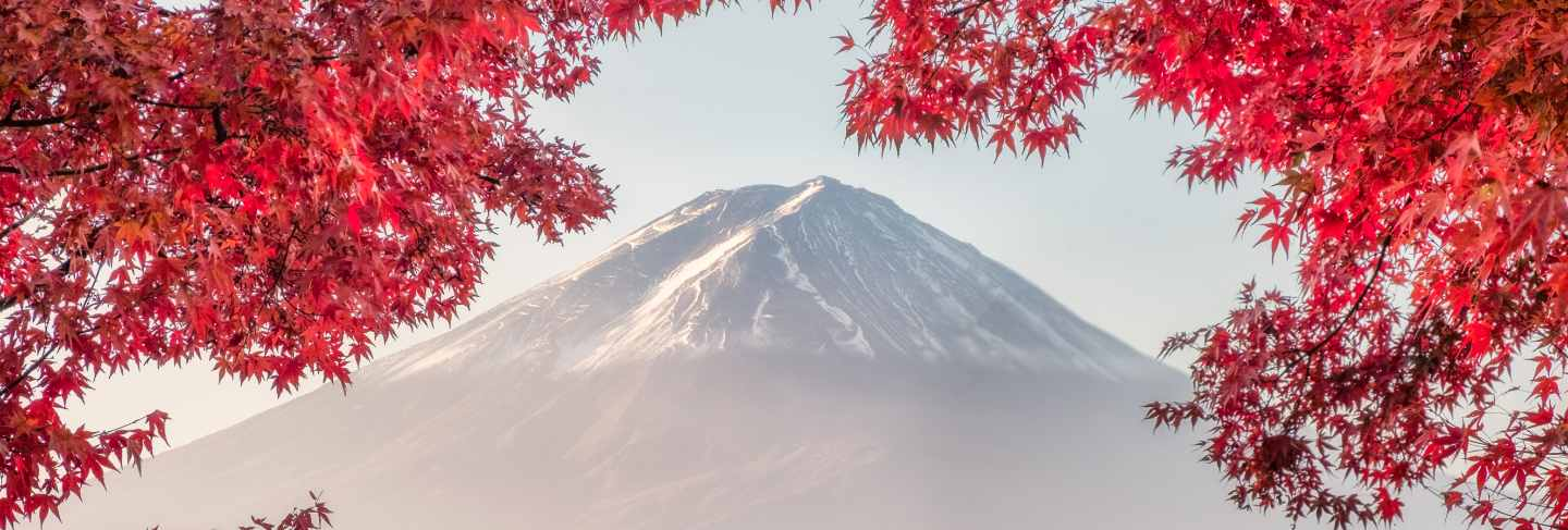 Mount fuji with red maple leaves cover in morning at kawaguchiko lake