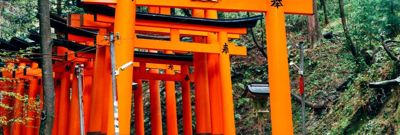 Walkway fushimi inari red torii in japan