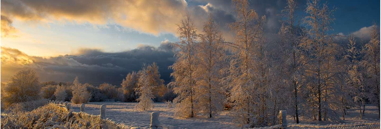 Winter morning landscape in krimulda,latvia