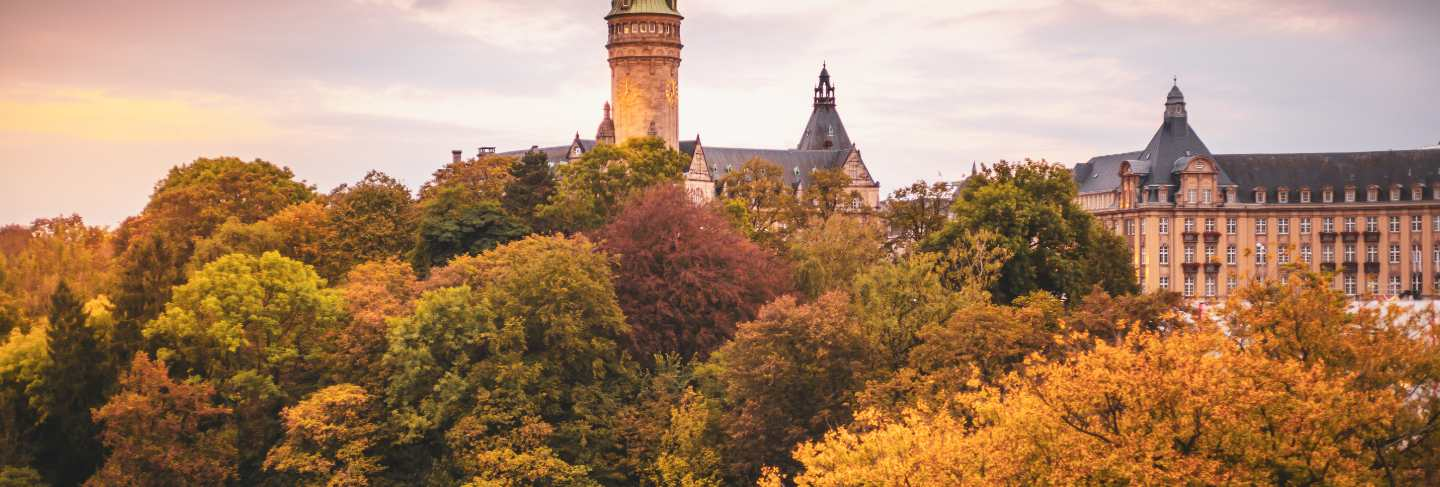 Tower of the bank of luxembourg surrounded by trees