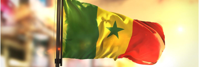 Senegal flag against city blurred background at sunrise backlight