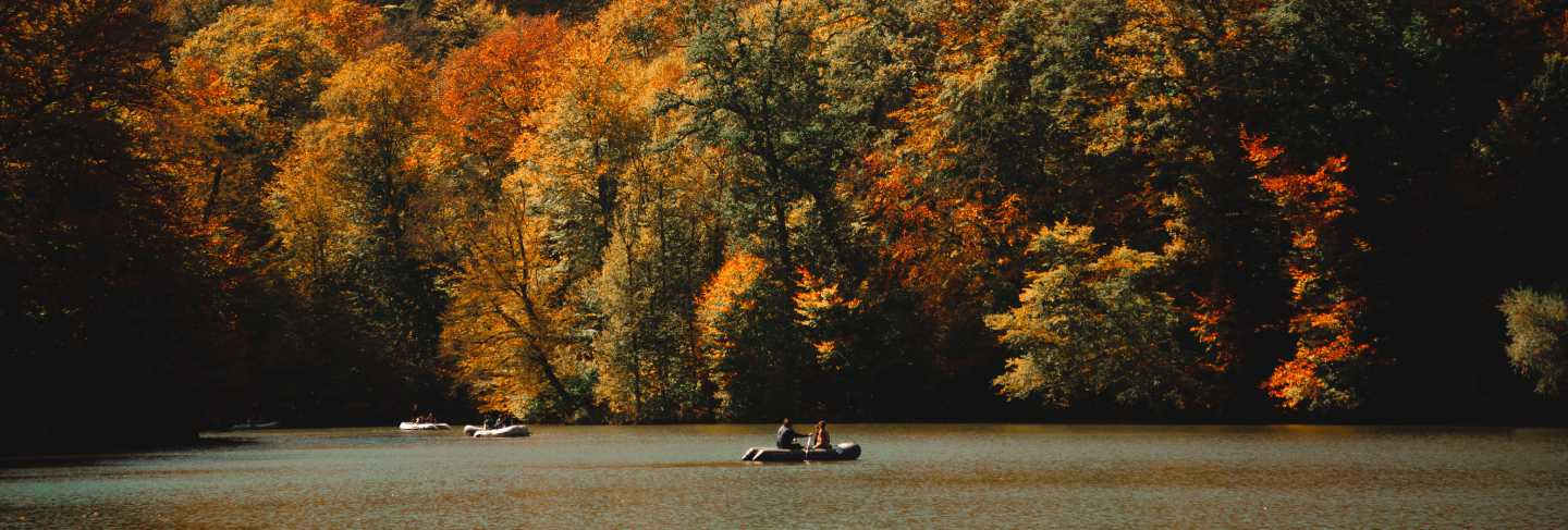 Vertical shot of people sailing in a green ake full surrounded by a colorful autumn forest
