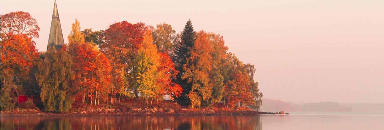 Orange and green leafy trees near lake