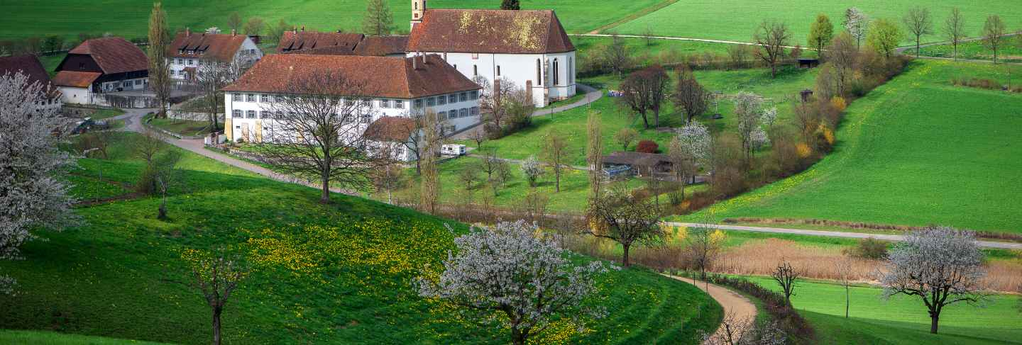 View from above on Olsberg monastery.