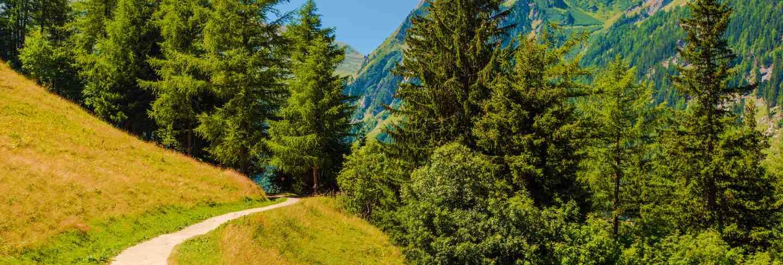Swiss mountains trail