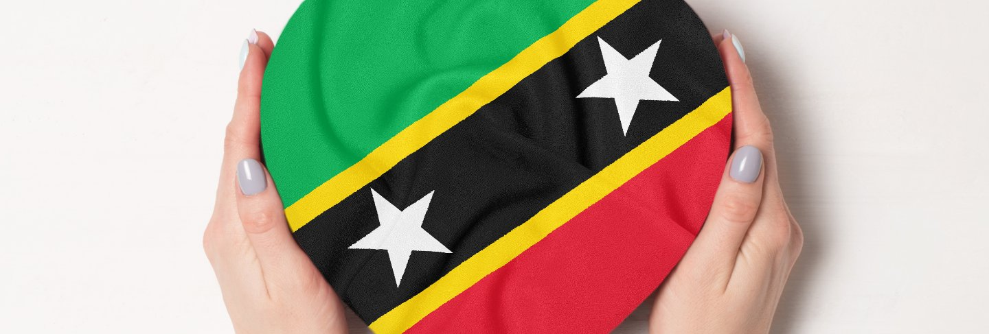Saint kitts and nevis flag 3d rendering on blue sky building background