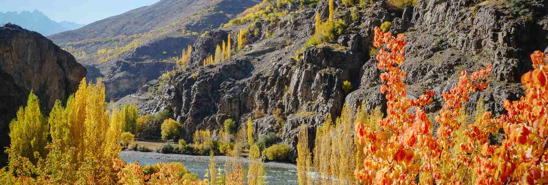Landscape view of colorful trees in autumn against hindu kush mountain range Premium Photo