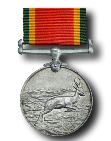 High quality official replica Africa Service Medal for sale