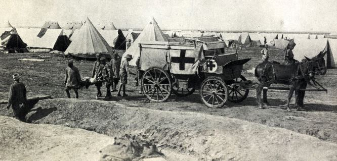 Fall of Kut 1916 Indian Army ambulance drawn by mules conveying the wounded to a river steamer