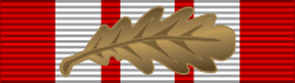 Naval General Service Medal 1915 with Oak Leaf for a Mention in Despatches