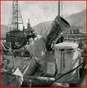 HMS Sandpiper