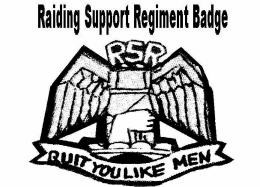 Raiding Support Regiment
